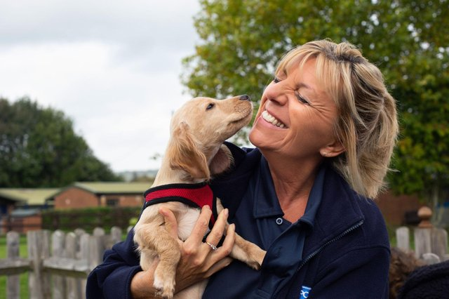 Nottinghamshire is one of the top 10 places in the UK for volunteers for the RSPCA. Photo: RSPCA
